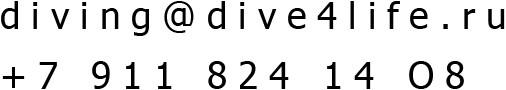 dive4life-contact